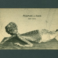 Merman of Aden postcard