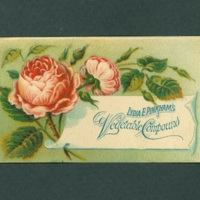 Pinkham Vegetable Compound trade card