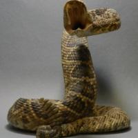 snakeoilc1-1a.jpg